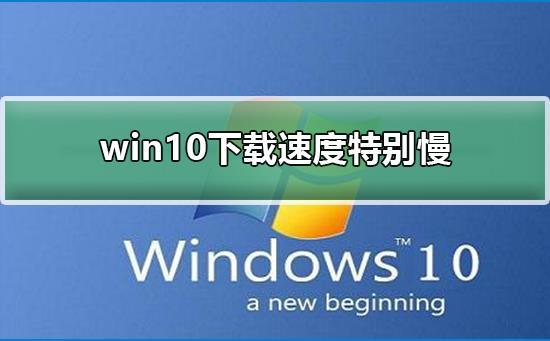 win10系统下载速度特别慢?